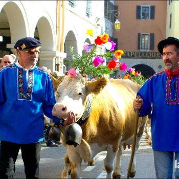 Descente des Alpages à Annecy